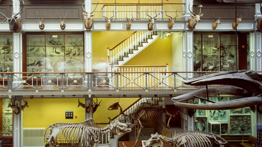 Top 5 Museums Of Dublin You Wont Want To Miss
