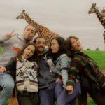 friends-ireland